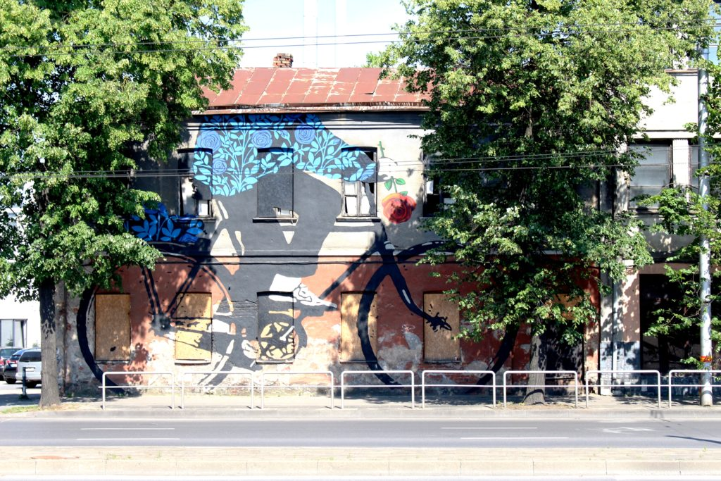 Bicyclist with a rose mural in Kaunas